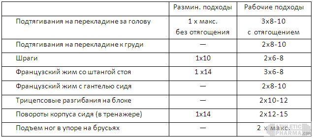 Программа тренировок новичек (3 этап, 2 тренировка)