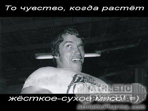Арни ))