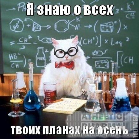 химиг