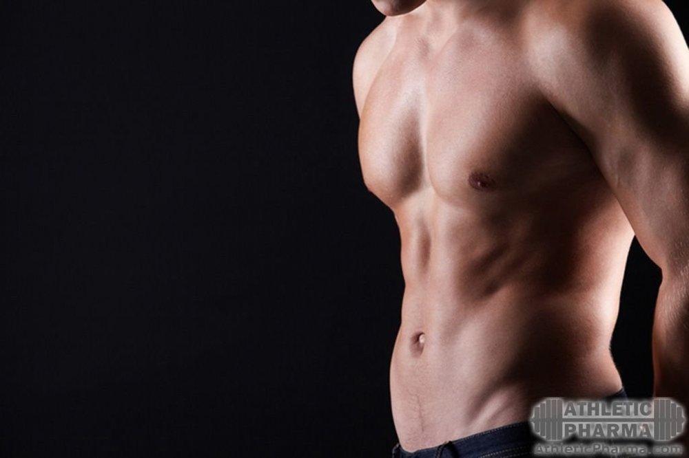 Тироиды для похудения
