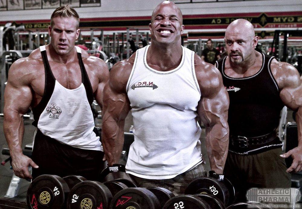 Мышцы бодибилдеров